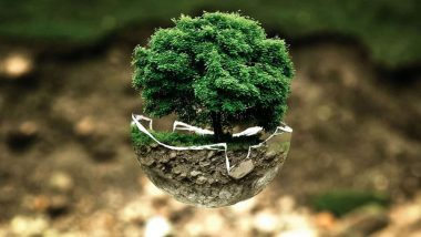 Earth Day 2020: जागतिक पृथ्वी दिना निमित्त टाळा पर्यावरणाचा -हास करणा-या 'या' गोष्टी आणि जपा वसुंधरेचे पावित्र्य