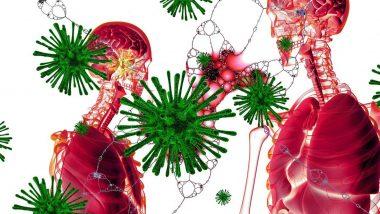 Coronavirus च्या उपचारासाठी नव्या पद्धतीचा अवलंब; जुन्या पेशंट्सच्या रक्ताने नवीन रुग्णांवर होणार उपचार, US FDA ने दिली मान्यता