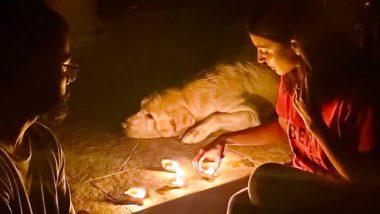 सचिन तेंडुलकर, विराट कोहली आणि रोहित शर्मासह क्रीडा क्षेत्राने पंतप्रधान नरेंद्र मोदींच्या 9 Baje 9 Minutes आवाहनाला दिला प्रतिसाद, दिवे लावत दिला एकतेचा संदेश