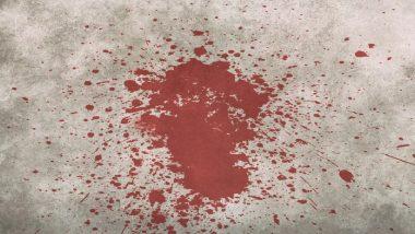 मुंबई: धक्कादायक! 25 वर्षीय Drug Addict नातवाने उडवले आजीचे मुंडके