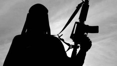 जम्मू कश्मीर: श्रीनगर मध्ये HMT भागात सुरक्षा दलावर दहशतवादी हल्ला