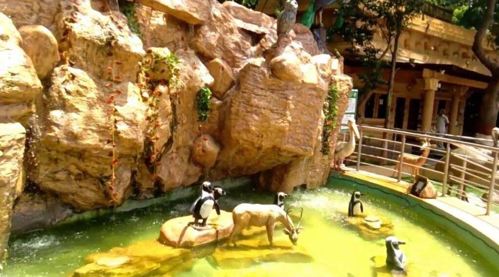 मुंबईची प्रसिद्ध राणीची बाग आता डिजिटल स्वरूपात; युट्यूब चॅनेल आणि ट्विटरच्या माध्यमातून जिजामाता उद्यान-प्राणीसंग्रहालयाला 'व्हर्च्युअल' भेट देणे शक्य