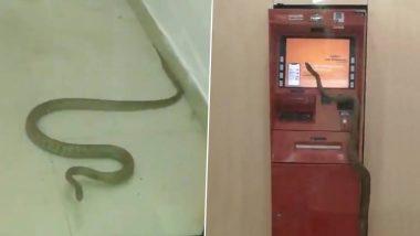 गाजियाबाद मधील ATM मशीन मध्ये शिरला साप; थरकाप उडवणारा व्हिडिओ सोशल मीडियात व्हायरल