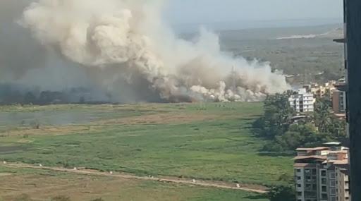Mumbai Fire: नाहूर जवळ पूर्व द्रुतगती मार्गावर खुल्या मैदानातील गवतात पेटली आग, परिसरात धुराचे लोट (Watch Video)