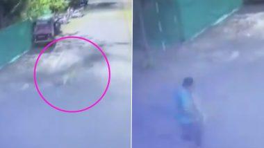महाराष्ट्र: नाशिक मधील इंदिरा नगर भागात बिबट्याचा दोघांवर जीवघेणा हल्ला, हे थरारक दृश्य सीसीटीव्हीत कैद, Watch Video