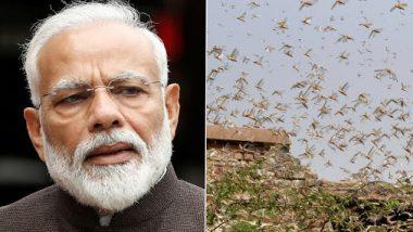 Locust Attack: टोळधाडीमुळे नुकसान झालेल्या सर्वांना मदत मिळणार- पंतप्रधान नरेंद्र मोदी