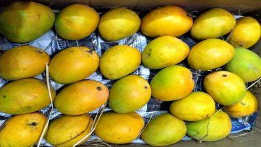 हापूस आंबा कसा ओळखला? नैसर्गिकरित्या पिकलेले आणि कृत्रिमरित्या पिकवलेल्या आंब्यातील नेमका फरक काय? आंबे विकत घेताना पारखून पाहा 'या' गोष्टी