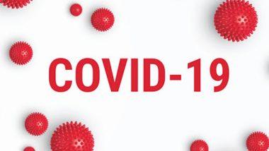 Coronavirus Update In Pune: पुणे जिल्ह्यात एकूण 8 हजार 134 कोरोनाबाधित; गेल्या 24 तासात 308 रुग्णांची नोंद तर, 22 जणांचा मृत्यू