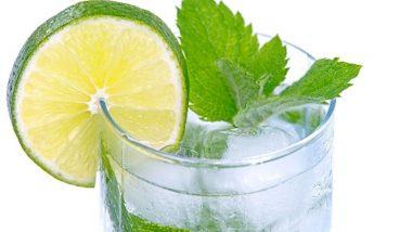 Summer Health Tips: उन्हाळ्यात बनवा पुदिन्यापासून बनवलेले 'हे' पेय आणि सन स्ट्रोक पासून करा स्वत:चा बचाव