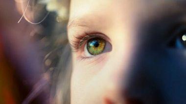 Summer Eye Care Tips: उन्हाळ्यात डोळ्यांची निगा राखण्यासाठी करा 'हे' घरगुती उपाय