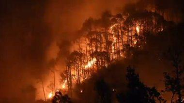 Forest Fire in Uttarakhand: उत्तराखंडमधील जंगलात लागलेल्या आगीमुळे 71 हेक्टर जमीन उध्वस्त; अनेक वन्यजीव प्रजाती धोक्यात