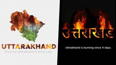 Uttarakhand Forest Fires: देवभूमी उत्तराखंड मध्ये 4 दिवसांपासून जंगलांमध्ये भीषण आग;  #SaveTheHimalyas म्हणत ट्वीटरवर युजर्सच्या प्रार्थना अन मदतीचं आवाहन