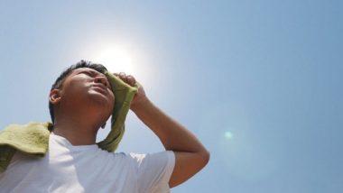 Summer Tips: उन्हाळ्यात Heat Stroke पासून बचाव करण्यासाठी 'या' गोष्टी खाणे ठरेल आरोग्यासाठी फायदेशीर