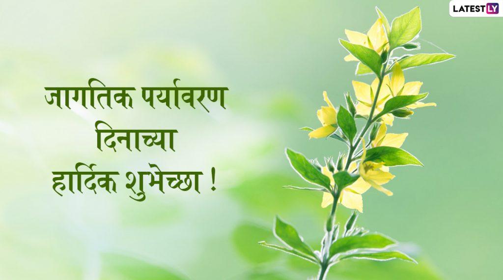 Happy World Environment Day 2020 Wishes: जागतिक पर्यावरण दिनाच्या मराठमोळ्या शुभेच्छा Greetings, Images, Messages, WhatsApp Status, Facebook च्या माध्यमातून द्या निसर्गाच्या संवर्धनासाठी लोकांमध्ये करा जनजागृती!