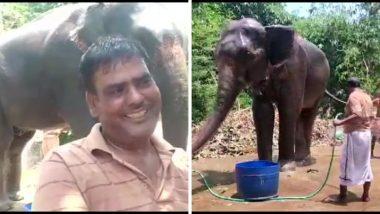कौतुकास्पद! बिहार येथील प्राणीप्रेमी अख्तर इमाम यांनी आपल्या दोन हत्तीच्या नावे केली संपूर्ण संपत्ती, वाचा सविस्तर
