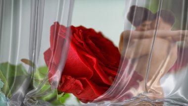 Sex Tips for Valentine's Day: व्हॅलेंटाईन डे ची रात्र आपल्या पार्टनरसोबत अविस्मरणीय बनविण्यासाठी खास सेक्स टिप्स