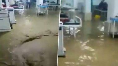 महाराष्ट्र: जळगाव मधील डॉ. उल्हास पाटील मेडिकल कॉलेज आणि हॉस्पिटलमध्ये पावसाचे पाणी शिरले, Watch Viral Video