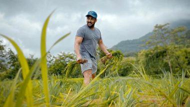 सलमान खान ने शेअर केला शेतात काम करतानाचा फोटो म्हणाला, 'दाने दाने पे लिखा होता हैं, खाने वाले का नाम'