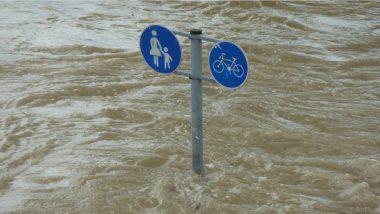 Assam Floods: असममध्ये महापूर 97 जणांचा मृत्यू, 26 लाख लोकांना फटका