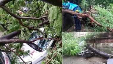 Maharashtra Rains: ठाण्यात झाडे उन्मळून 3 वाहनांचे नुकसान; कोणतीही जीवितहानी नाही