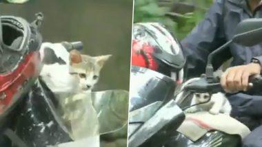 मुंबई: मुसळधार पावसात पाण्यात सापडलेल्या मांजरीच्या पिल्लाची सुटका करून तिला आपल्या मोटरसायकलवरून घरी घेऊन जाणा-या मुंबईकराचा व्हिडिओ व्हायरल, Watch Video