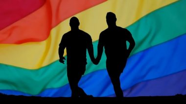 Gay Couple Live-In Relationship: समलैंगिक जोडप्यांना लिव्ह-इन रिलेशनशिप मध्ये राहण्यास न्यायालयाची परवानगी; Orissa High Court चा मोठा निर्णय