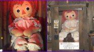 Is Annabelle Doll Real? एनाबेल डॉल खरी आहे का? जाणून घ्या 'कॉन्ज्यूरिंग' फेम झपाटलेल्या बाहुलीची खरी कथा