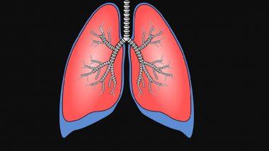 Double Lung Transplant for Covid-19 Patient: हैदराबाद मध्ये कोरोनाबाधित रूग्णावर दोन्ही फुफ्फुसांच्या प्रत्यारोपण ऑपरेशन; भारतातील पहिलीच शस्रक्रिया