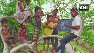 Online Classes From Tree Top: नंदुरबारच्या शिक्षकाची चिकाटी; जमिनीवर मोबाईल नेटवर्क मिळत नसल्याने चक्क झाडावर चढून मुलांना शिक्षण (See Photo)