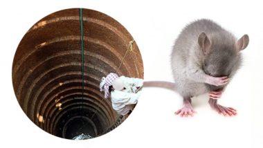 नागपूर: विहिरीत पडलेला उंदीर काढताना तिघांचा मृत्यू
