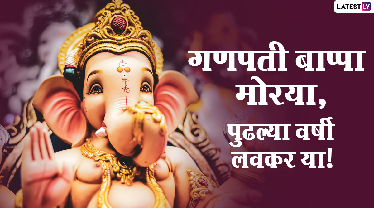 Ganesh Visarjan Status | File Photo