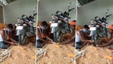 मकाच्या कणसाचे दाणे काढण्यासाठी शेतकऱ्याने लढवली शक्कल; आनंद महिंद्रा यांनी शेअर केला अनोख्या जुगाडाचा व्हिडिओ