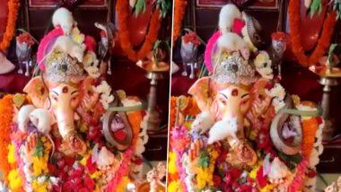 Snake-Rats Playing Together on Lord Ganesh Idol Viral Video:  गणपती बाप्पाच्या मूर्तीवर साप आणि उंदीर यांचा एकत्र वावर; पहा या दुर्मिळ नजाराच्या व्हायरल व्हिडीओ!