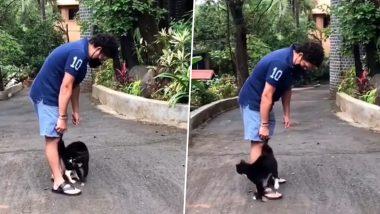 Sachin Tendulkar Instagram: सचिन तेंडुलकरची 'वडापाव'च्या शोधात असलेल्या 'नवीन मित्राशी' झाली भेट, मास्टर-ब्लास्टने शेअर केला क्युट Video