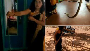 Snake Catcher Nirzara Chitti: साडी परिधान केलेल्या महिला सर्पमित्र निर्जारा चित्ती ने हाताने पकडला कोब्रा; व्हिडिओ पाहून नेटिझन्सकडून कौतुकाचा वर्षाव