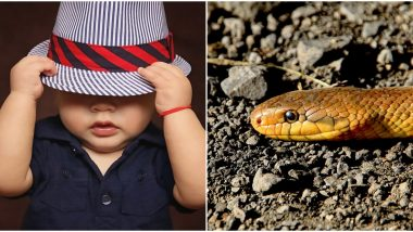 धोका टळला: एक वर्षाचा मुलगा सापाला चावाला, शरीराचा तुकडाच गिळला खेळताना