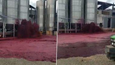 Red Wine Floods: 50 हजार लीटर रेड वाइन पाण्याप्रमाणे वाहून गेली; व्हायरल व्हिडिओ पाहून नेटीझन्स झाले हैराण