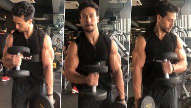 Tiger Shroff चा Workout करतानाचा 'हा' Hot Video पाहून तरूणी होतील फिदा