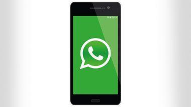 WhatsApp Images आणि Videos मुळे फोन मेमरी फुल होतेय? 'या' टेक टिप्स येतील कामी