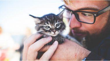 Coronavirus Alert: सावधान! आता कुत्रा, मांजर यांनाही होऊ शकतो COVID-19 संसर्ग