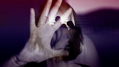 Rajasthan Gangrape Case: राजस्थानच्या एका हॉटेलमध्ये स्वच्छता कामाच्या बहाण्याने बोलवून 25 वर्षीय महिलेवर सामुहिक बलात्कार