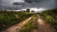 Maharashtra Rainfall: येत्या 24 तासांत पश्चिम किनारपट्टीवरील पावसाची तीव्रता कमी होण्याची शक्यता; महाराष्ट्राला मिळणार दिलासा- IMD