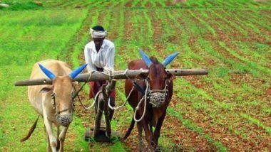 नुकसानग्रस्त शेतकऱ्यांना वाढीव दराने मिळणार मदत; महसूल व वन विभागाचा शासन निर्णय जारी