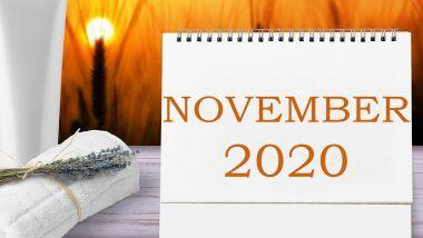 November 2020 Festivals Calendar: नोव्हेंबर महिन्यात यंदा दिवाळी, तुलसी विवाह ते अगदी त्रिपुरारी पौर्णिमेची धूम पहा सार्या सणांची यादी