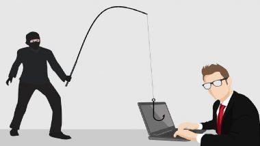 New Online Fraud: नोकरी देण्याच्या आमिषाने तरुणाची ऑनलाईन फसवणूक, बँक खात्यातून पैसे गायब, सतर्क राहण्यासाठी पहा हा वीडियो