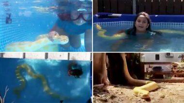 Little Girl Swims With Python: पाळलेल्या अजगरासोबत 8 वर्षांच्या मुलीचे स्विमिंग; थक्क करणारा 'हा' व्हायरल व्हिडिओ नक्की पहा
