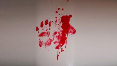 Siblings Murder In Jalgaon: कुऱ्हाडीचे घाव घालून 4 अल्पवयीन भावंडांची हत्या, रावेर तालुक्यातील बोरखेडा गावातील घटना