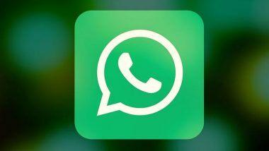 WhatsApp युजर्ससाठी खुशखबर! आता लॅपटॉपच्या माध्यमातून करता येणार Audio आणि Video कॉलिंग