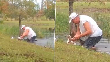 Man Rescue Puppy From Alligator: पाळीव कुत्र्याचा जीव वाचवण्यासाठी मालकाची मगरीशी झटापट; Watch Viral Video