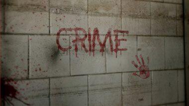 Ireland: आयर्लंडची राजधानी डबलिनमध्ये घरात आढळले भारतीय महिलेसह तिच्या 2 मुलांचे मृतदेह; पोलिसांनी वर्तवला हत्येचा संशय